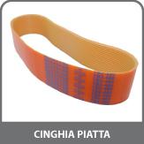 Cinghia Piatta